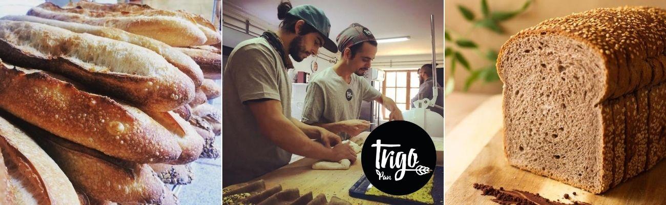 Trigo Pan y La Multiplicación del Buen Sabor