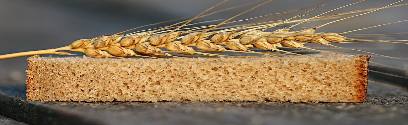 Día Mundial del Pan: Alimento Global